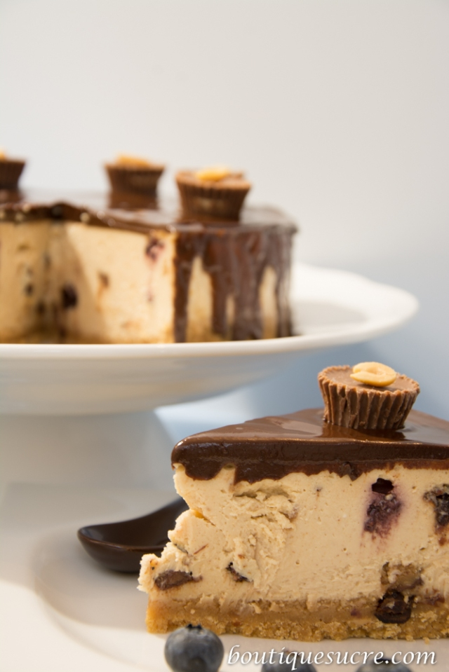 Cheesecake cacahuete